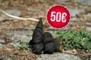 50€ le caca de chien : sanctions doublées pour les déchets sauvages