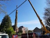 Deux arbres menaçaient de tomber sur l'école de Suzeril, ils sont abattus d'urgence ce mardi
